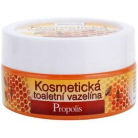 Bione Cosmetics Honey + Q10 kozmetická vazelína  155 ml