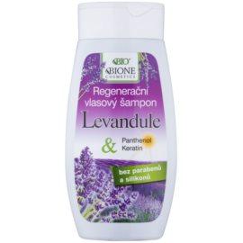 Bione Cosmetics Lavender Regenierendes Shampoo für alle Haartypen  260 ml