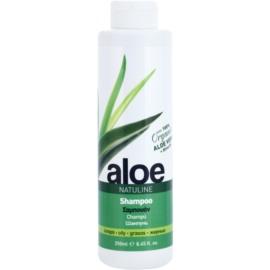 Bodyfarm Natuline Aloe Szampon do włosów przetłuszczających się z aloesem  250 ml