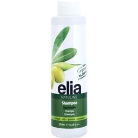 Bodyfarm Natuline Elia champú para cabello graso con aceite de oliva  250 ml