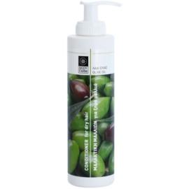 Bodyfarm Olive Oil hydratační kondicionér pro suché vlasy  250 ml