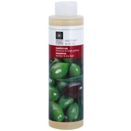 Bodyfarm Olive Oil šampon pro normální až suché vlasy  250 ml