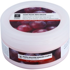 Bodyfarm Red Grape Maske für das Haar  200 ml