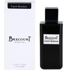 Brecourt Esprit Mondain Eau de Parfum für Herren 100 ml