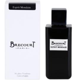 Brecourt Esprit Mondain Eau de Parfum Herren 100 ml