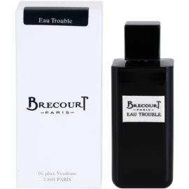 Brecourt Eau Trouble Eau de Parfum für Damen 100 ml