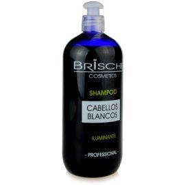 Brische Iluminante šampon pro odbarvené vlasy  500 ml