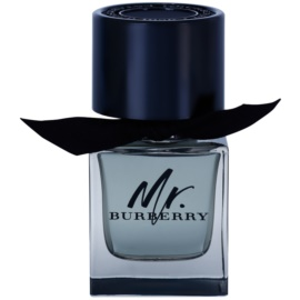 Burberry Mr. Burberry eau de toilette per uomo 50 ml