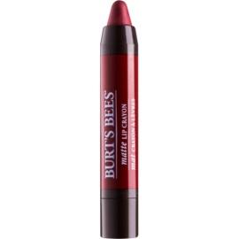 Burt's Bees Lip Crayon dünner Lippenstift mit Matt-Effekt Farbton 411 Redwood Forrest 3,1 g