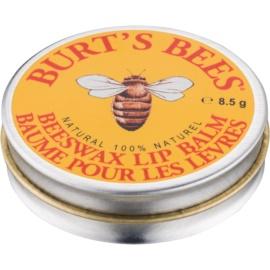 Burt's Bees Lip Care balzám na rty s vitamínem E  8,5 g