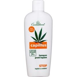 Cannaderm Capillus champô anticaspa  150 ml