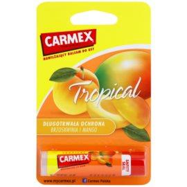 Carmex Tropical hydratačný balzam na pery v tyčinke (Peach and Mango) 4,25 g