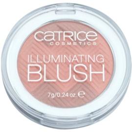 Catrice Illuminating Blush with Illuminator 040  7 g