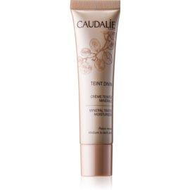 Caudalie Teint Divin mineralna vlažilna tonirana krema odtenek Medium To Dark Skin 30 ml