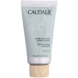 Caudalie Cleaners&Toners exfoliante de limpieza profunda  para todo tipo de pieles  75 ml
