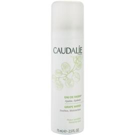 Caudalie Cleaners&Toners agua refrescante en spray apto para pieles sensibles  75 ml