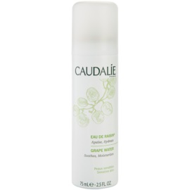 Caudalie Cleaners&Toners Refreshing Water In Spray for All Types of Skin Including Sensitive Skin  75 ml