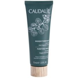 Caudalie Masks&Scrubs máscara de limpeza contra imperfeições de pele  75 ml