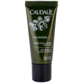 Caudalie Polyphenol C15 Creme für den Augenbereich und die Lippen gegen Falten und dunkle Augenringe (Anti-Oxidant, Smoothes Fine Lines, Corrects Dark Circles) 15 ml