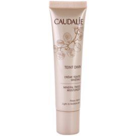 Caudalie Teint Divin ásványi hidratáló és tonizáló krém árnyalat Light To Medium Skin 30 ml