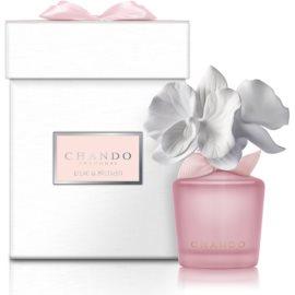 Chando Myst Lilac & Nutmeg dyfuzor zapachowy z napełnieniem 35 ml
