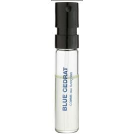 Comme Des Garcons Blue Cedrat parfumska voda uniseks 1,5 ml