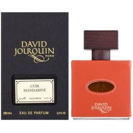 David Jourquin Cuir Mandarine eau de parfum férfiaknak 100 ml