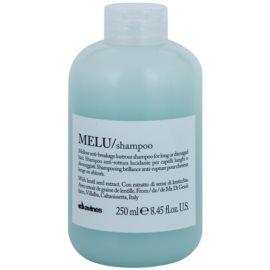 Davines Melu Lentil Seed м'який шампунь для пошодженого та ослабленого волосся  250 мл