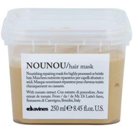 Davines NouNou Tomato поживна маска для пошкодженного,хімічним вливом, волосся  250 мл