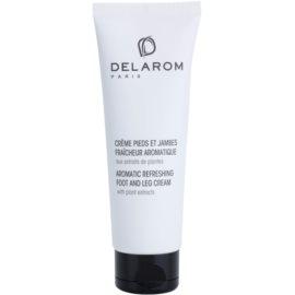 Delarom Body Care crema refrescante aromática para pies con extractos vegetales  125 ml
