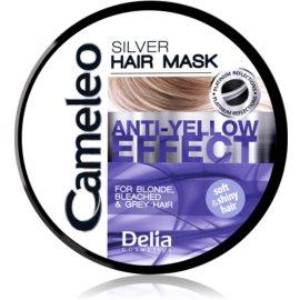 Delia Cosmetics Cameleo Silver maska za lase za nevtralizacijo rumenih odtenkov  250 ml