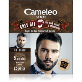 Delia Cosmetics Cameleo Men éénmalige kleur voor direct verbergen van grijs haar Tint  1.0 Black 2 x 15 ml