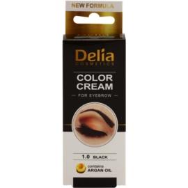 Delia Cosmetics Argan Oil фарба для брів відтінок 1.0 Black 15 мл