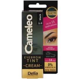 Delia Cosmetics Cameleo profesionalna kremasta barva za obrvi brez amoniaka odtenek 1.0 Black 15 ml