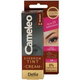 Delia Cosmetics Cameleo profesionalna kremasta barva za obrvi brez amoniaka odtenek 4.0 Brown 15 ml
