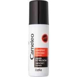Delia Cosmetics Cameleo Haarlak met Sterke Fixatie   50 ml