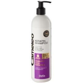 Delia Cosmetics Cameleo BB Sampon cu keratina pentru parul cret  500 ml