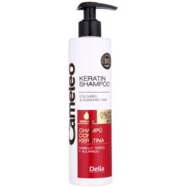 Delia Cosmetics Cameleo BB Shampoo  mit Keratin für gefärbtes Haar oder Strähnen  250 ml