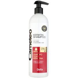 Delia Cosmetics Cameleo BB Sampon cu keratina pentru par vopsit sau suvitat  500 ml