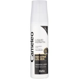 Delia Cosmetics Cameleo BB tekutý keratin ve spreji pro poškozené vlasy  150 ml