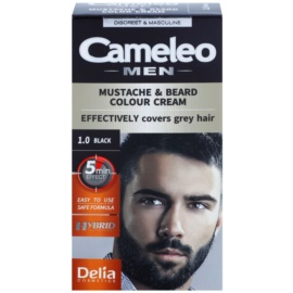 Delia Cosmetics Cameleo Men barva na vousy a knír odstín 1.0 Black 60 ml