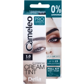 Delia Cosmetics Cameleo Pro Green barva na obočí bez amoniaku odstín 1.0 Black 15 ml