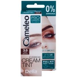 Delia Cosmetics Cameleo Pro Green barva za obrvi brez amoniaka odtenek 3.0 Dark Brown 15 ml