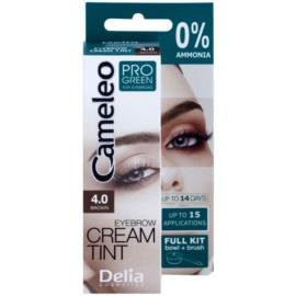 Delia Cosmetics Cameleo Pro Green barva za obrvi brez amoniaka odtenek 4.0 Brown 15 ml