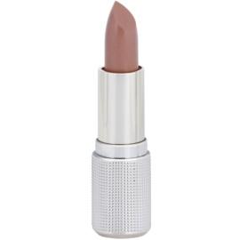 Delia Cosmetics Creamy Glam barra de labios con textura de crema tono 113 4 g