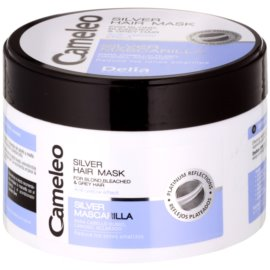 Delia Cosmetics Cameleo Silver Masca de par neutralizeaza tonurile de galben  250 ml