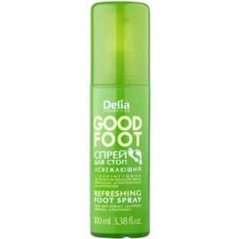 Delia Cosmetics Good Foot spray  revigorant pentru  picioare  100 ml