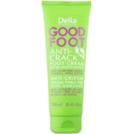 Delia Cosmetics Good Foot зволожуючий крем для потрісканої шкіри ніг  100 мл