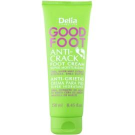 Delia Cosmetics Good Foot hydratačný krém na popraskané chodidlá  100 ml