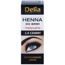 Delia Cosmetics Henna barva za obrvi odtenek 1.0 Black 2 g + 2 ml